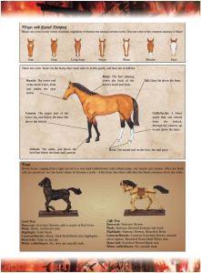 Painting Horses Mordhiem